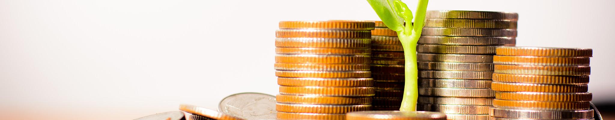 faire-fructifier-mon-epargne-ageci-finances-lorient